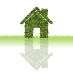 green house cleaning eco friendly house cleaning services white plains